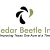 Cedar Beetle Inc.