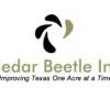 Cedar Beetle Inc.